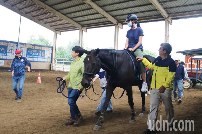 弘光科大推跨領域馬術治療復健課程,師生到馬場體驗。記者游振昇/攝影