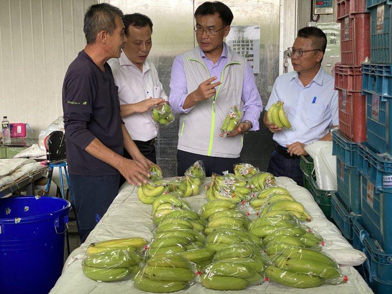 農委會主委陳吉仲(右二)今中午到迦登果菜生產合作社了解蕉農第一線產銷情況。記者劉星君/攝影