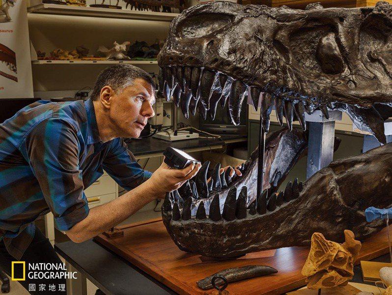 勞倫斯.威特默在他位於俄亥俄大學的實驗室裡,凝視著霸王龍頭骨鑄件的內部。霸王龍的腦殼輪廓讓古生物學家得知這種動物高度仰賴嗅覺。2019年的一份研究根據處理氣味的腦區相對大小,推論霸王龍的氣味受體基因數可能是人類的1.5倍。 攝影: 保羅. 維佐尼 PAOLO VERZONE
