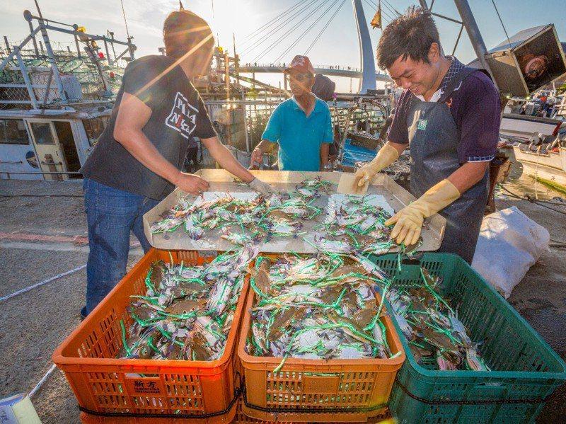 秋天是吃蟹的季節,近年來在政府大力行銷並結合觀光後,萬里蟹知名度大開,年產值也爆增。圖/新北市政府提供