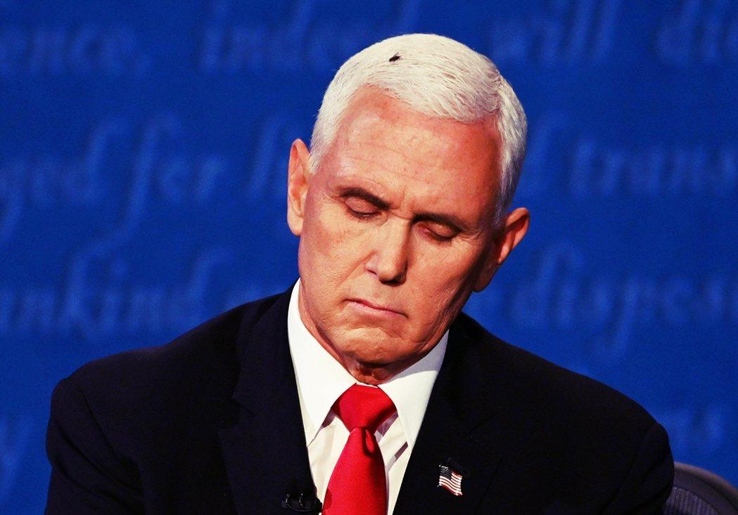 彭斯頭上的蒼蠅成了美國副總統候選人辯論的對決高潮? 圖/法新社