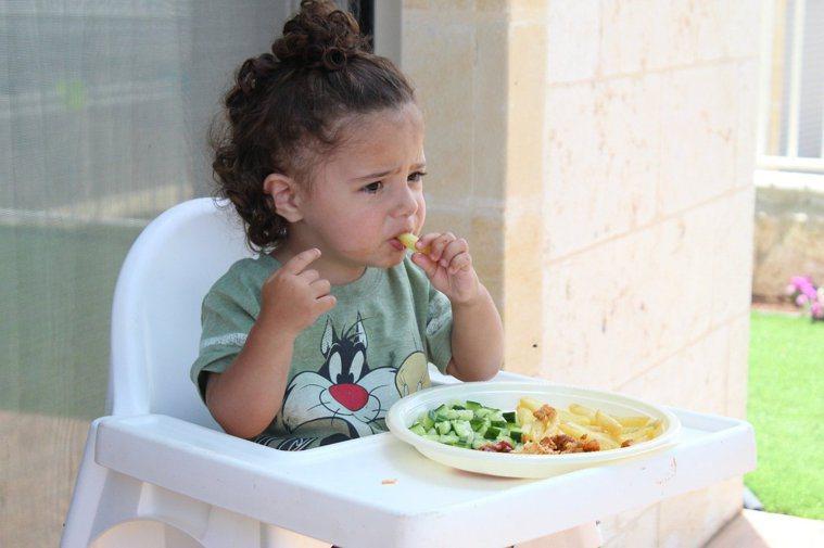 小朋友愛吃肉跟菜,不愛吃主食,這樣營養夠嗎?圖/取自Pixbay