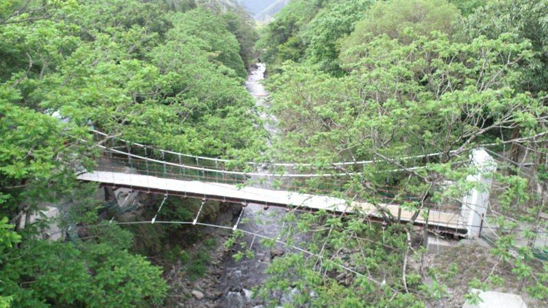 台中武陵農場去年10月興建跨越七家灣溪吊橋,吊橋命名「京華橋」,今年7月7日落成啟用。圖/武陵農場提供