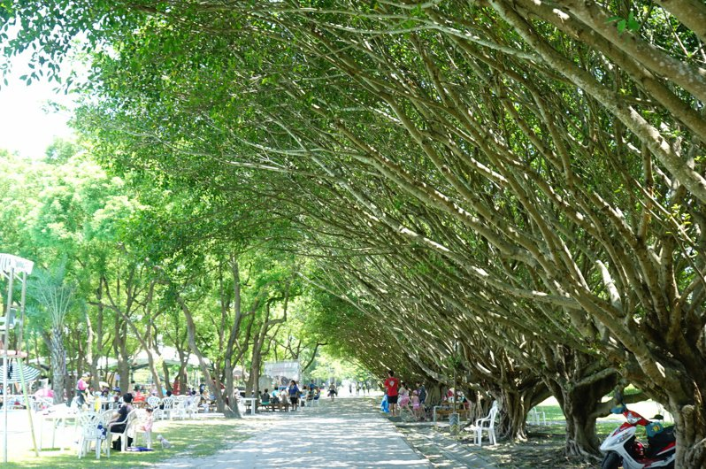 花蓮縣吉安鄉的知卡宣綠森林親水公園,占地廣闊,景色優美。記者王燕華/攝影
