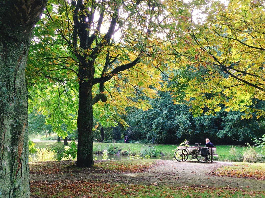 鄰近商業圈的碧翠絲公園,午間能看到來此享受午餐的人。 圖/陳若齡攝影