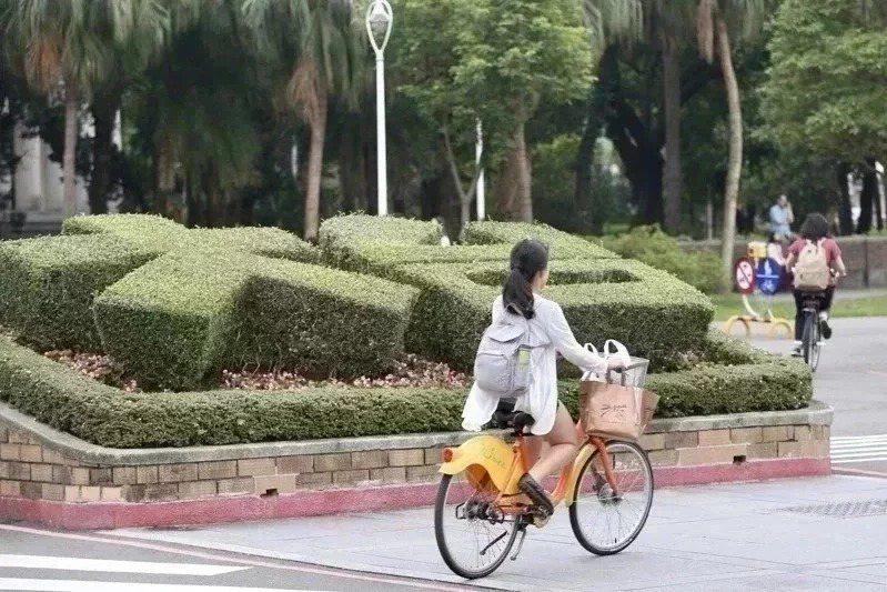 台灣大學。圖/聯合報系資料照片