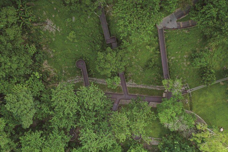 搭建於森林間的空中棧道,讓人恣意地在樹冠層上悠遊,等待與野生動物不期而遇。 圖片提供/知本國家森林遊樂區
