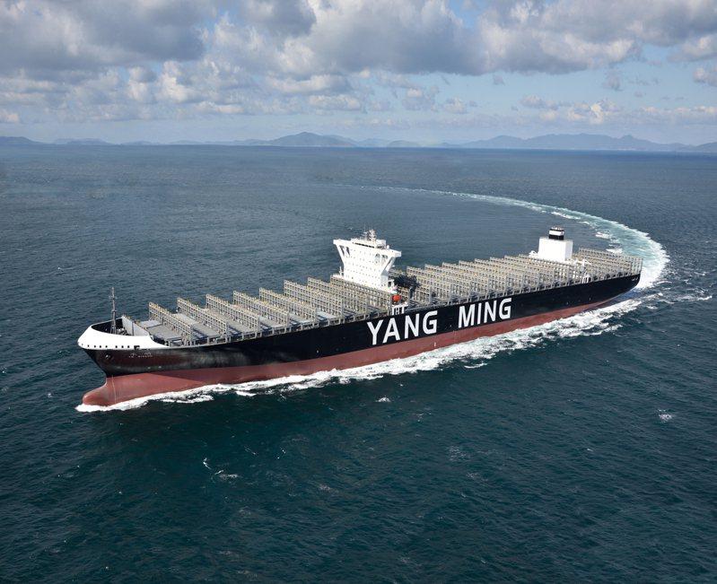 12月以來,資本市場的目光焦點從熱門的半導體產業轉向貨櫃航運業,28日股市上漲81.46,上市上櫃的航運股有11檔漲停。(本報系資料庫)