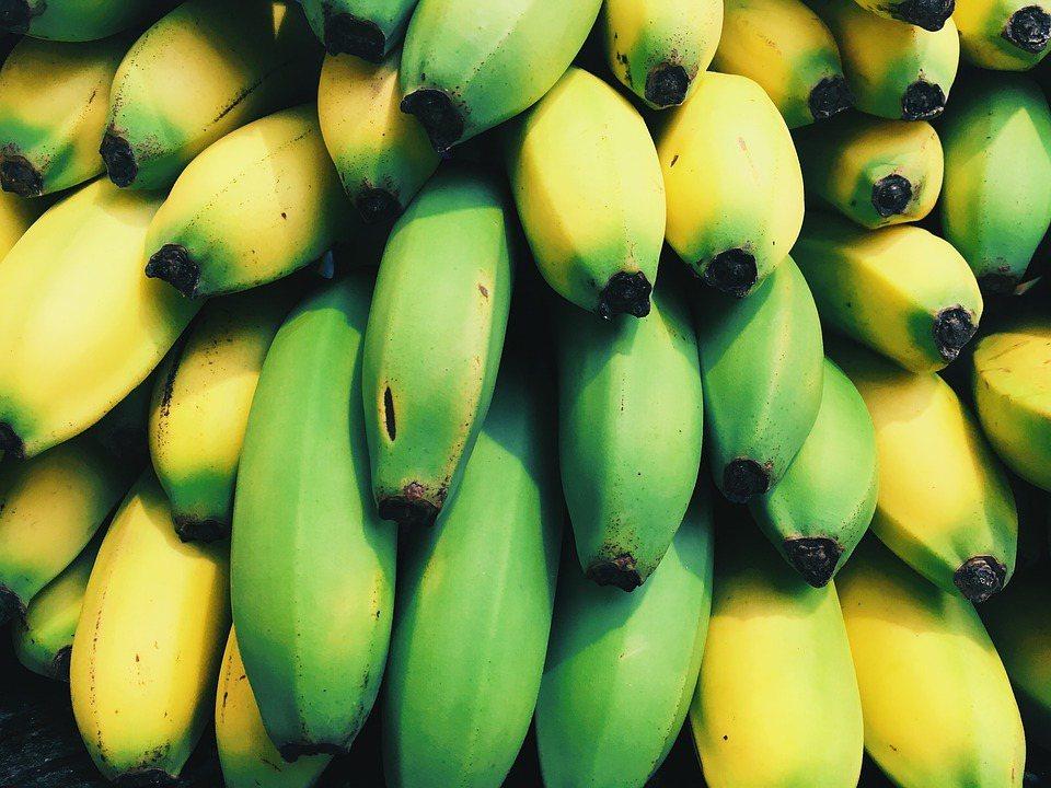 香蕉是更年型果實。在外皮呈現綠色的時候,能量會轉化為澱粉儲存起來。 圖/pixa...