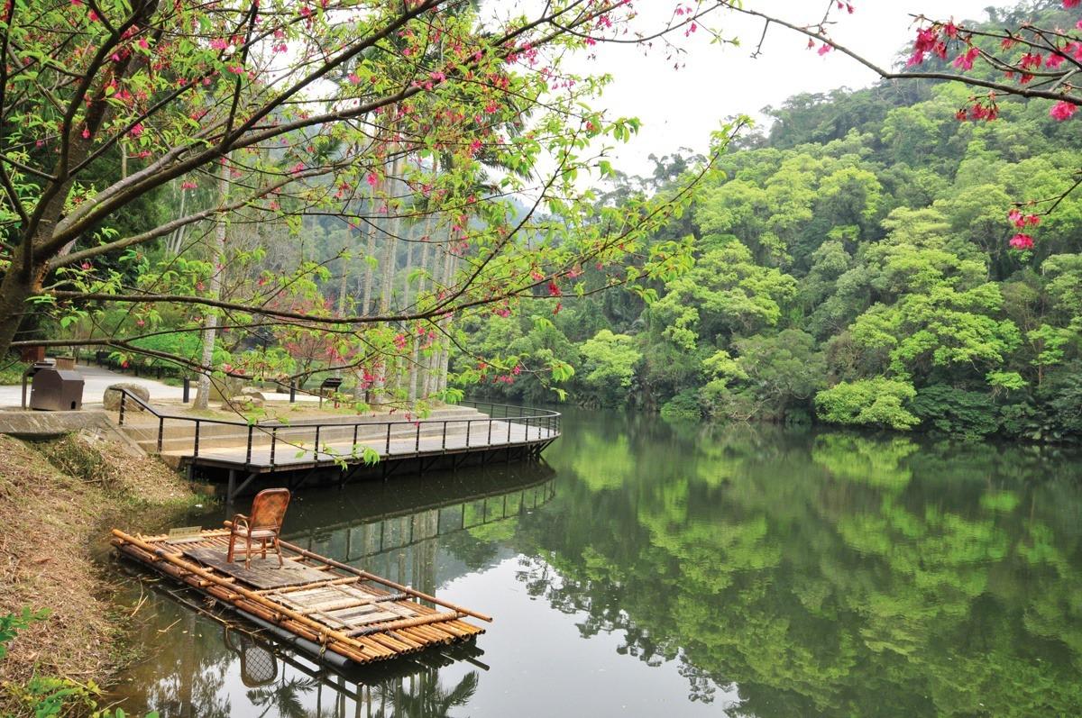 後慈湖景緻和慈湖不一樣,更顯靜謐而且生態豐富。 圖/桃園市政府風景管理處提供
