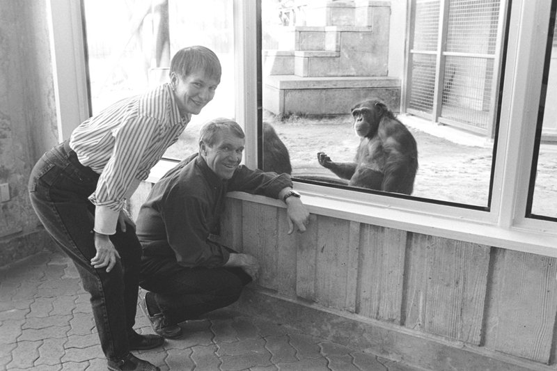 黑猩猩與人類交流研究所創辦人,與懂手語的黑猩猩華秀,攝於1995年。 圖/路透社