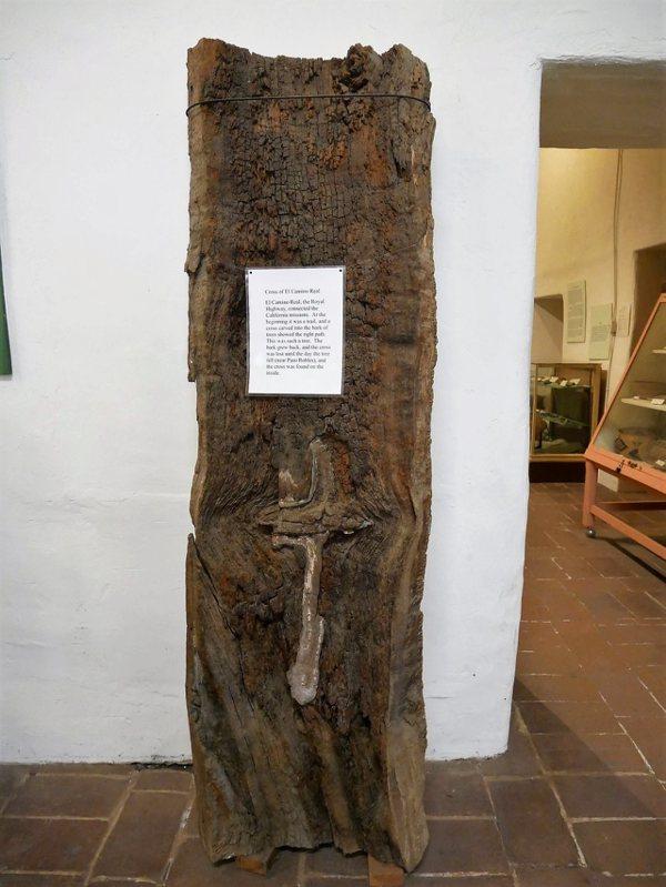 這棵樹被當時的傳教士認為是神蹟,樹上長出的十字架是代領他們在皇家之路上傳教所走的正確方向。