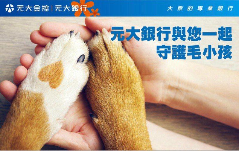 元大銀行推出「守護毛小孩」系列活動,寵物險加碼現金回饋20%。圖/元大銀行提供