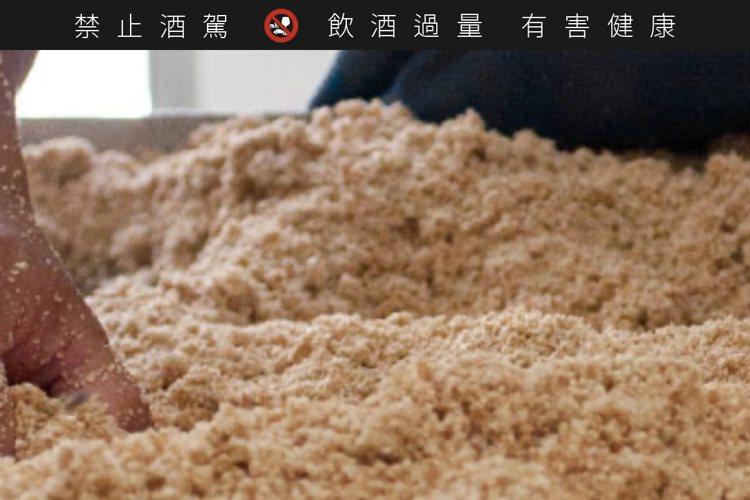 蒸煮後的高粱飯經過拌麴後成為「酒醪」進入發酵池發酵,以人工翻攪使其得以均勻發酵。...