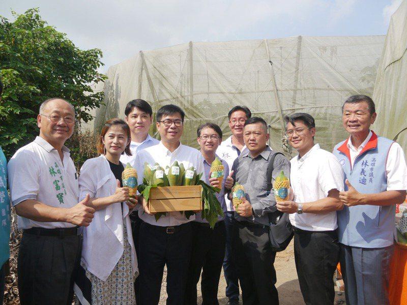 高雄市長陳其邁(左三)參訪美濃木瓜產業,不少農友到場關心。記者徐白櫻/攝影