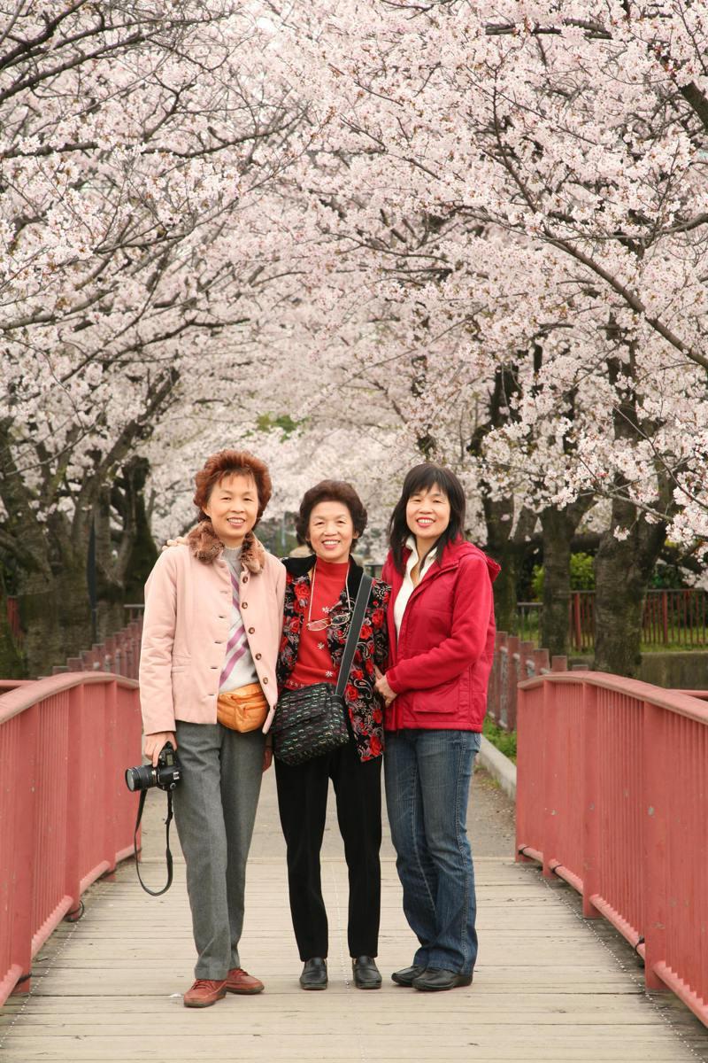 復健科醫師畢柳鶯(左)陪伴重病母親張女士(中)斷食尋求善終,母女3人在發病第8年同遊京都賞櫻花;張女士在今年3月已往生。圖/畢柳鶯提供