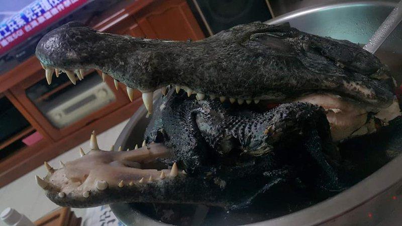 網友力推全聯雞湯包燉魚頭,沒想到竟是燉鱷魚頭,嚇壞一堆人。圖擷自《全聯消費經驗老實說》