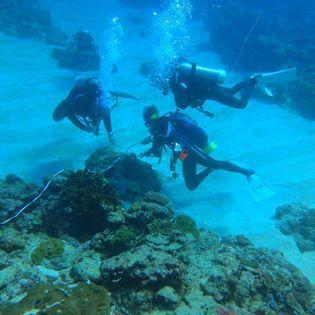 體檢珊瑚礁讓他更關心海洋生態,陳玄州和朋友已養成潛水必撿海中垃圾的習慣。 圖/陳...