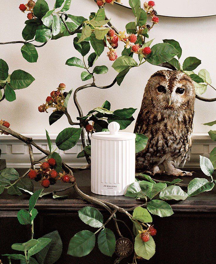 Jo Malone London Townhouse野莓與歐洲黑莓香氛工藝陶瓷蠟...