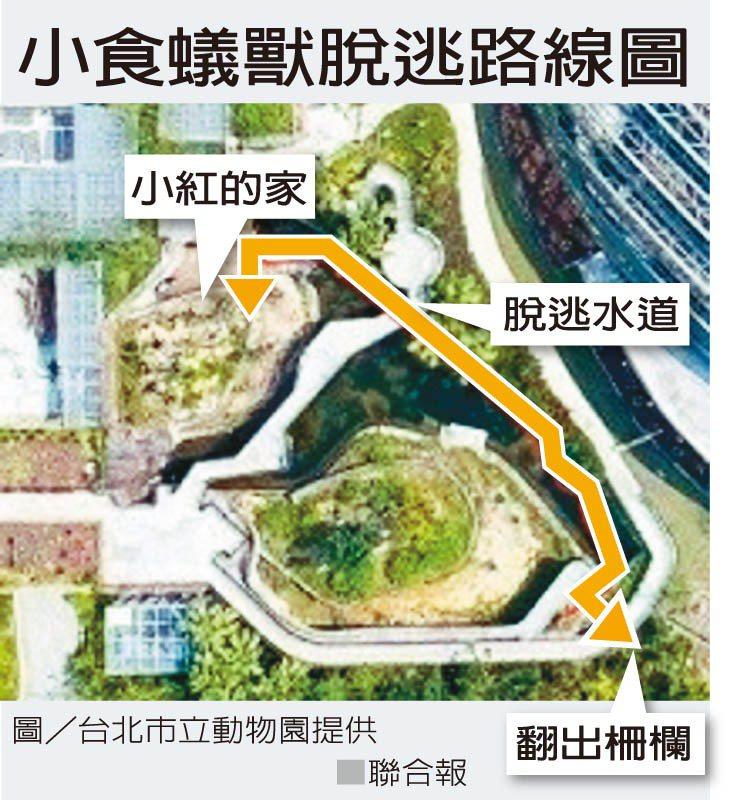 小食蟻獸脫逃路線圖 圖/台北市立動物園提供