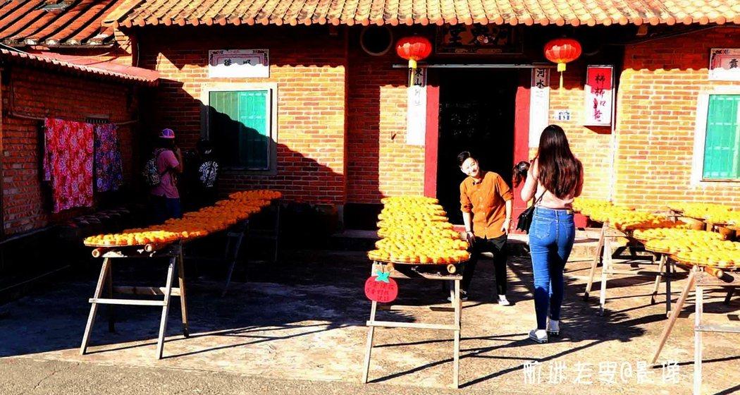 風和日麗,陽光燦爛,正是曬柿餅的最佳季節,新埔也是曬柿子最壯觀的小鎮。
