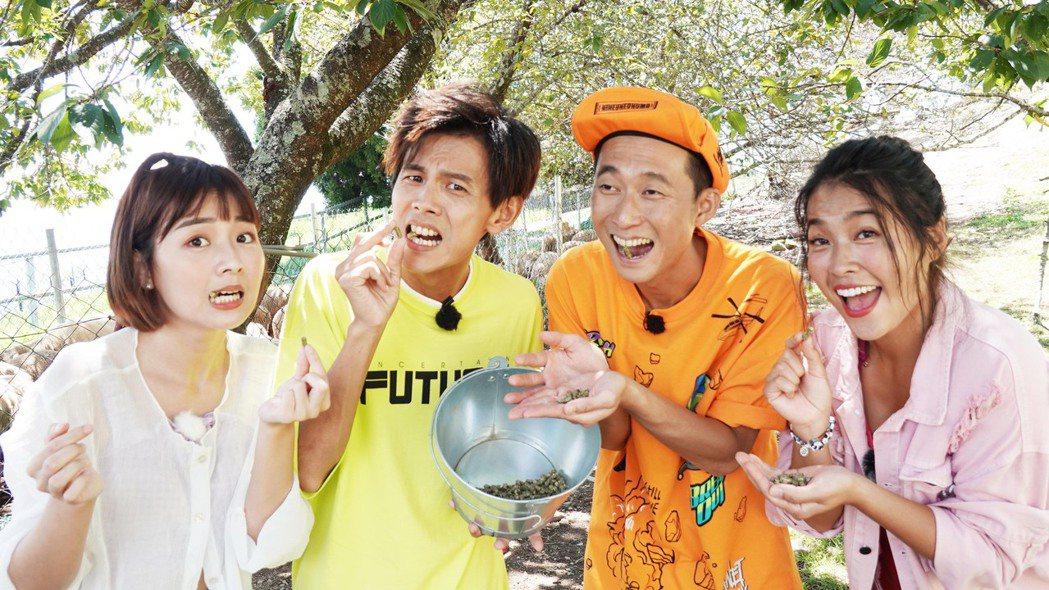籃籃(左起),阿翔,浩子與小嫻上民視八大「綜藝新時代」。圖/民視提供