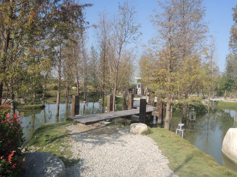 圖三:小橋貫穿生態池