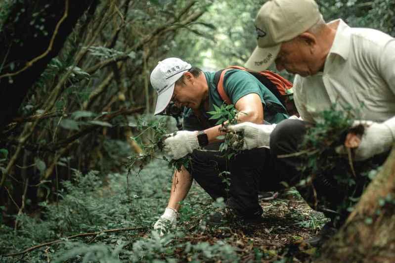 AROMASE艾瑪絲創辦人陳俊偉(綠衣者),親自帶領團隊並號召各界落實綠色永續淨化行動,至今已為地球清除超過324公斤的垃圾,為環境生態永續盡心力。 圖/AROMASE艾瑪絲提供