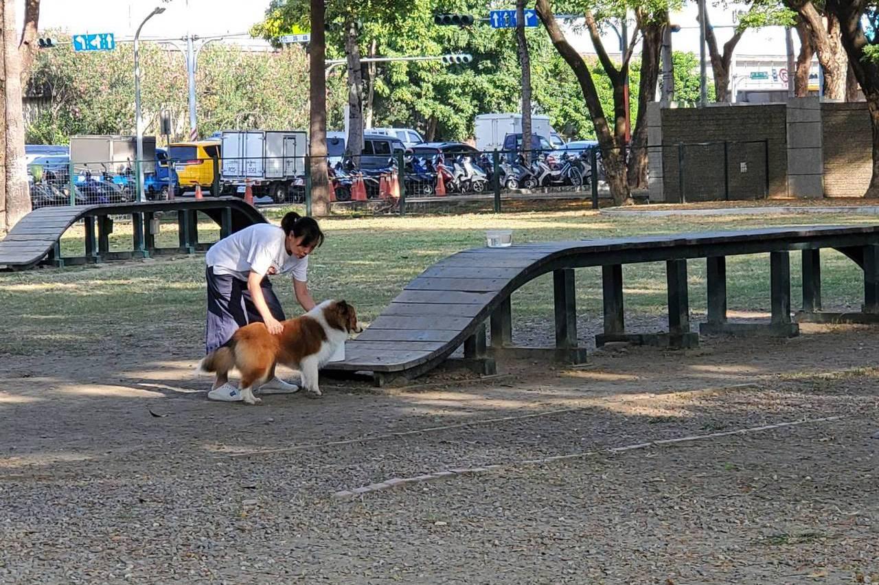高雄唯一寵物公園 未達標準