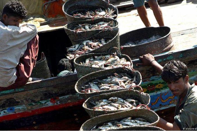 中國漁船獲准在巴基斯坦深海捕魚?伊斯蘭堡政策成謎