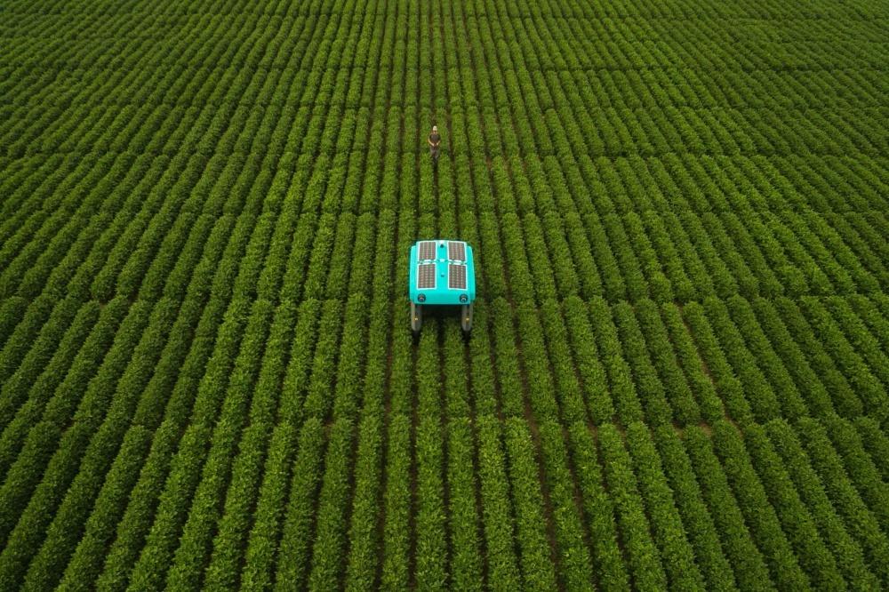 Alphabet推動Mineral項目 希望利用機器人改善作物耕種效率