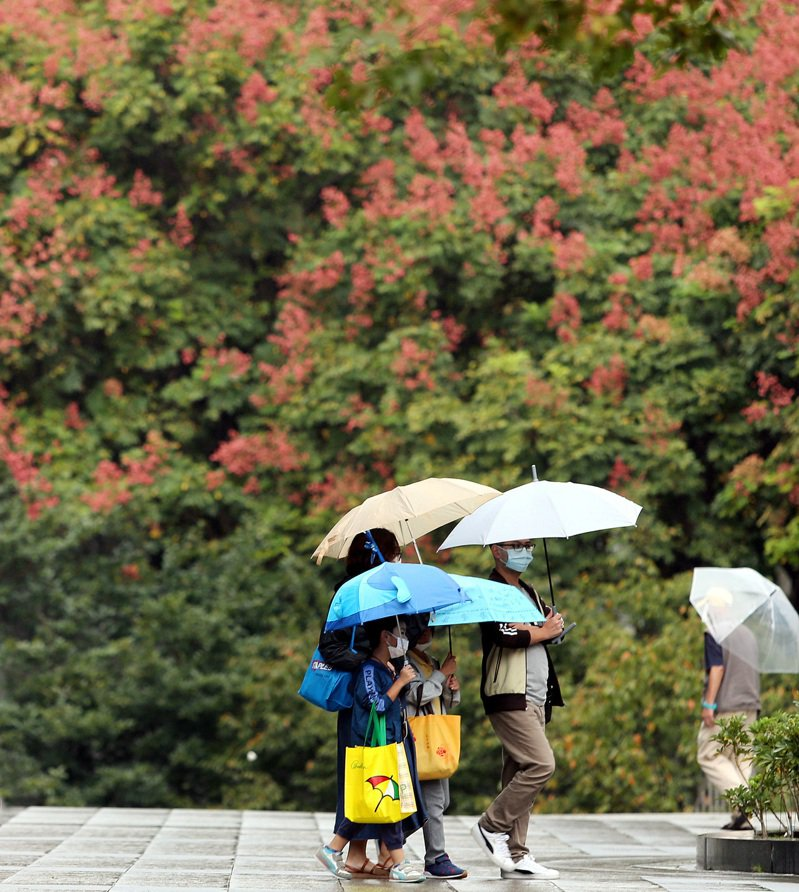 北台灣陰雨綿綿,擋不住民眾踏青興致。記者侯永全/攝影