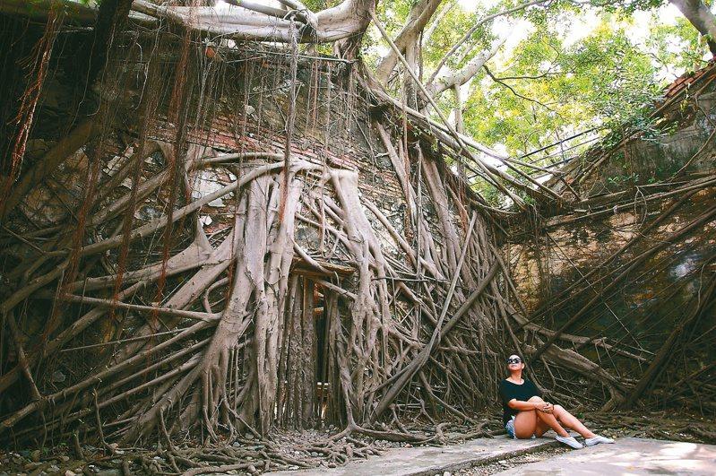 被樹根盤繞的安平樹屋,有著「台灣吳哥窟」的美譽。圖/陳睿中