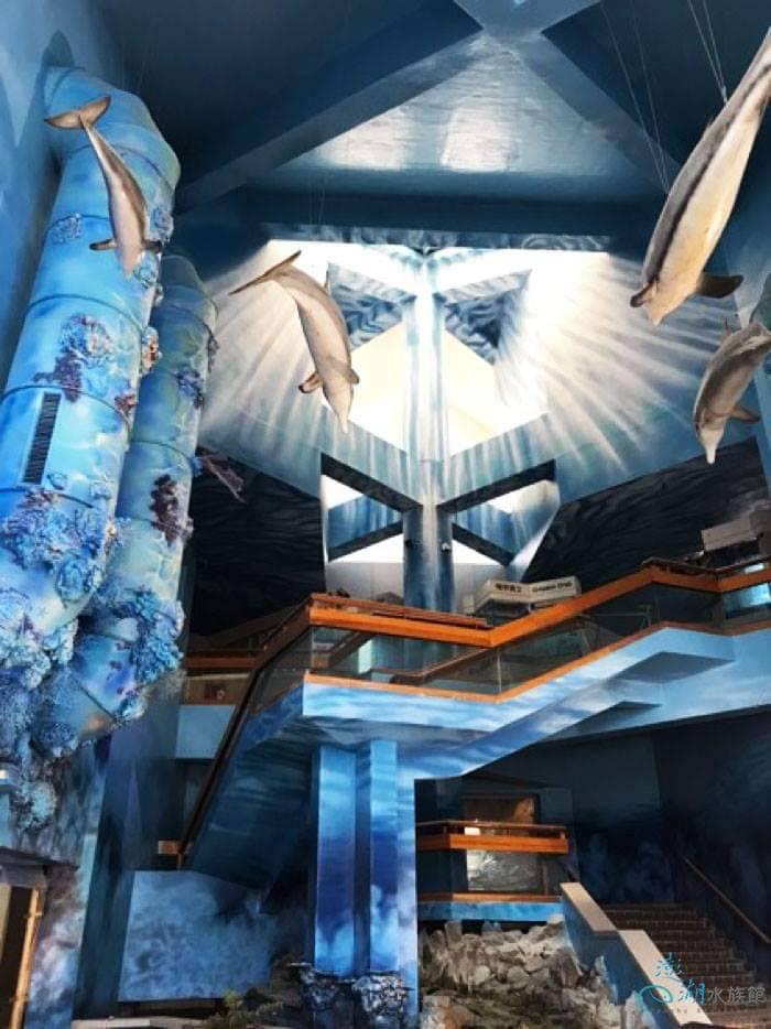 澎湖水族館大廳-海洋景觀壁畫生命湧泉。