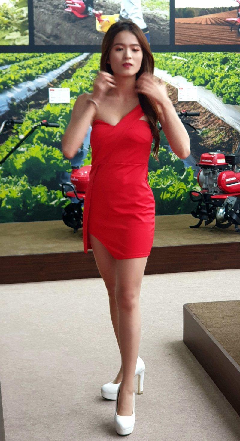 show girl一身紅,和綠色背景形成鮮豔對比。記者鄭國樑/攝影
