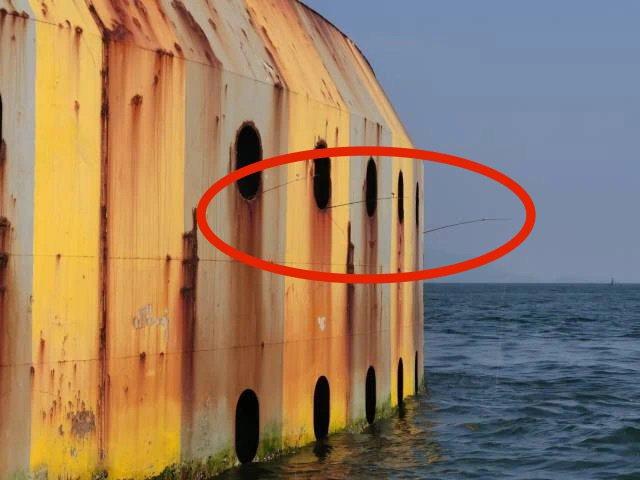 港珠澳大橋橋墩防撞鋼箱套洩水孔竟伸入一支支釣桿,網友戲稱,原來每個釣客還有獨力包...
