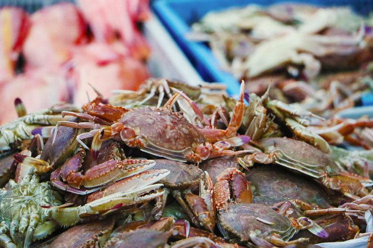 馬公第三漁港漁獲豐富,逛遊頗有樂趣。圖/澎湖福朋喜來登提供