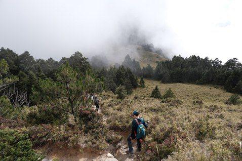 免費的陷阱:為何廉價的山域活動,是保育與遊憩的雙輸?