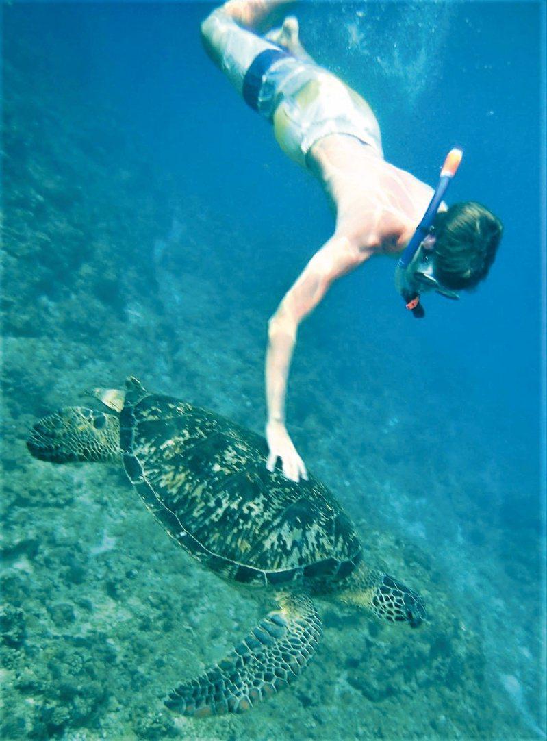 圖為琉球鄉民去年在美人洞海域拍到一名外籍人士違法觸摸海龜,遭到撻伐。圖/取自小琉球聯盟臉書