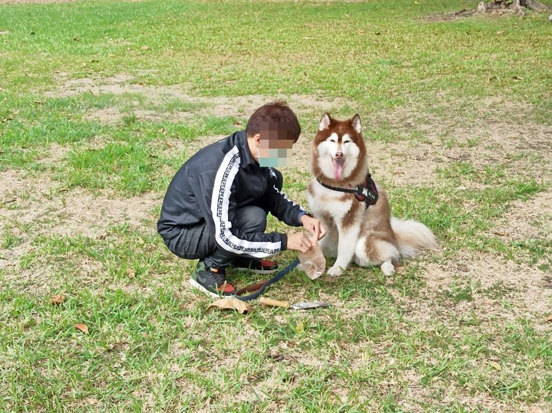 台東縣環保局呼籲毛爸毛媽們帶家中愛犬外出散步,請隨手清理狗便(如圖),否則會挨罰。(非當事人犬) 圖/台東縣環保局提供