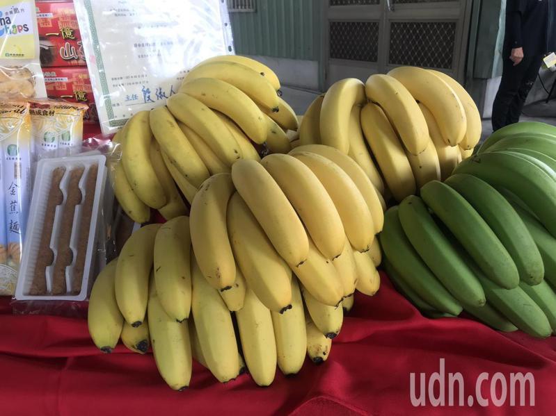 台灣香蕉今年至9月底已外銷3282公噸,創下5年來新高。記者賴香珊/攝影