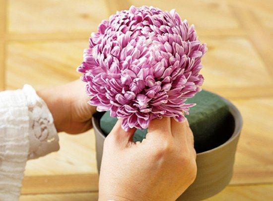【碗花】牡丹菊剪枝後,以花面最美的方向配置在視覺焦點處。 圖/蘋果屋出版社提供