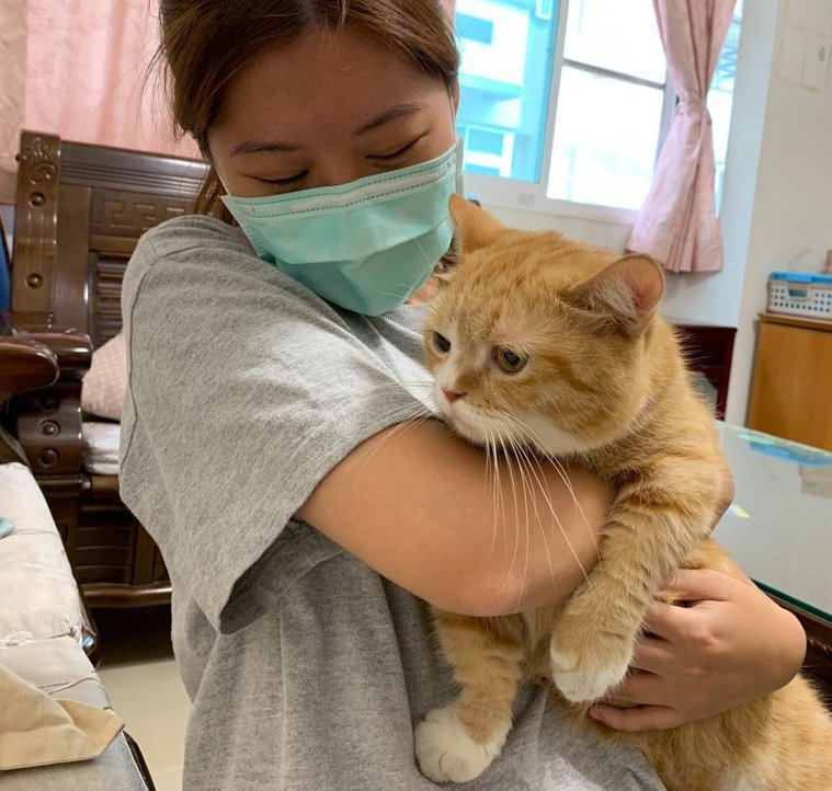 眼科醫醫師提醒,飼養寵物也別忽視牠們原本的野性。圖/新高醫院提供