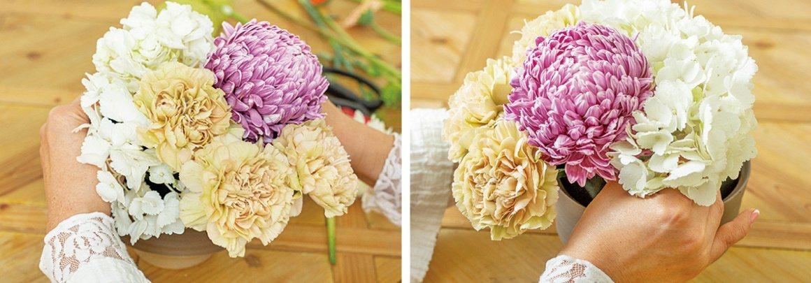 【碗花】繡球花從左到右放,連成一片。 圖/蘋果屋出版社提供