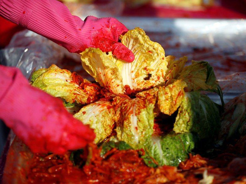 每年11月立冬到12月是南韓家庭醃製越冬泡菜的時節,但今年因碰上連續梅雨季及颱風,白菜歉收。路透