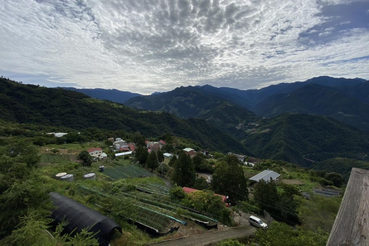 全國最高徵才活動在清境 免費膳宿還可欣賞高山美景