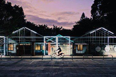 正在進場施工階段的2020桃園文創博覽會「走桃花」,已然盡顯空間的魔幻魅力。 圖/格式設計展策提供