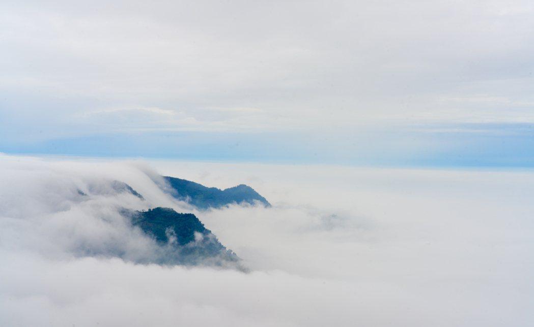 每年秋冬季節嘉義阿里山區,海拔約1400公尺番路鄉公田村隙頂,是觀賞、拍攝雲海重...