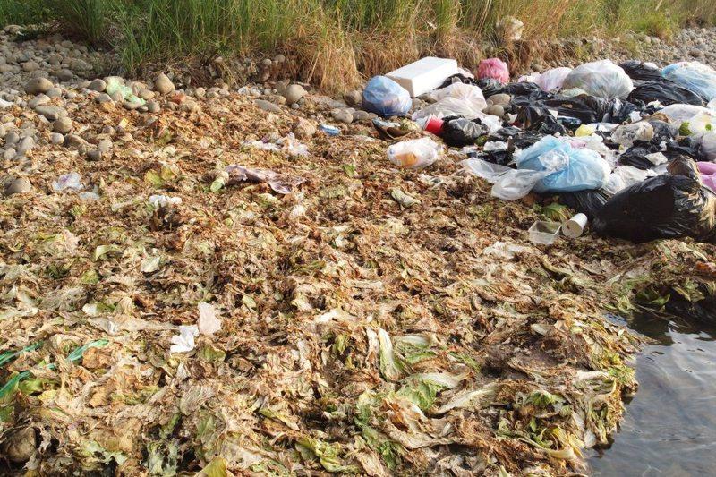 今年中秋假期,中投公路高架橋下的大里溪河道,被棄置大批菜葉。圖/李璟泓提供