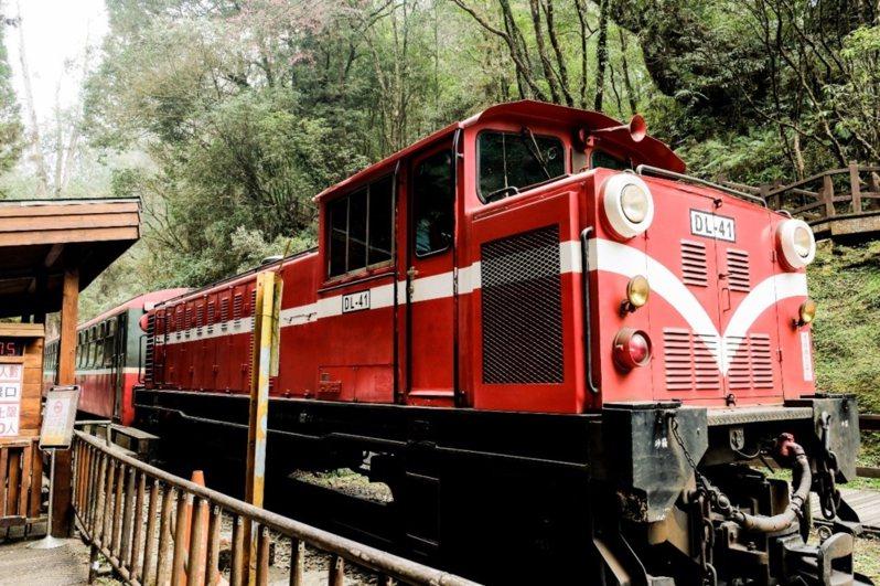 雄獅推出「阿里山林鐵獨家包列」系列遊程。圖/雄獅集團提供
